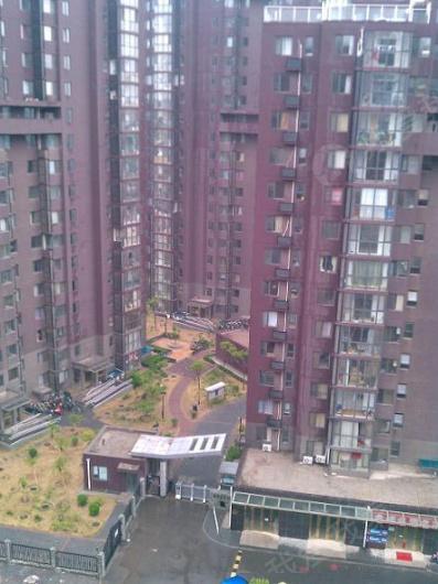 新通国际花园图片